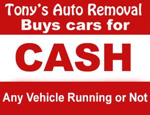 Tonys Auto Removal