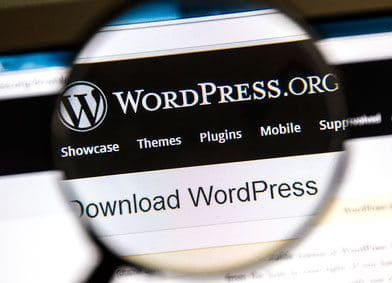 Image of WordPress Software